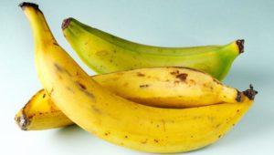 Plantain   Healthy Food